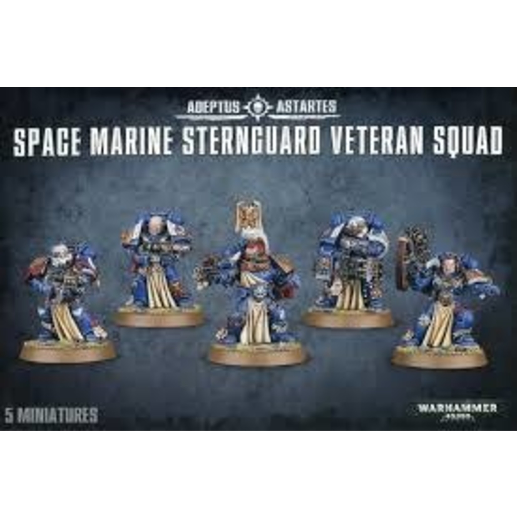 Space Marine Sternguard Veteran Guard (40K)