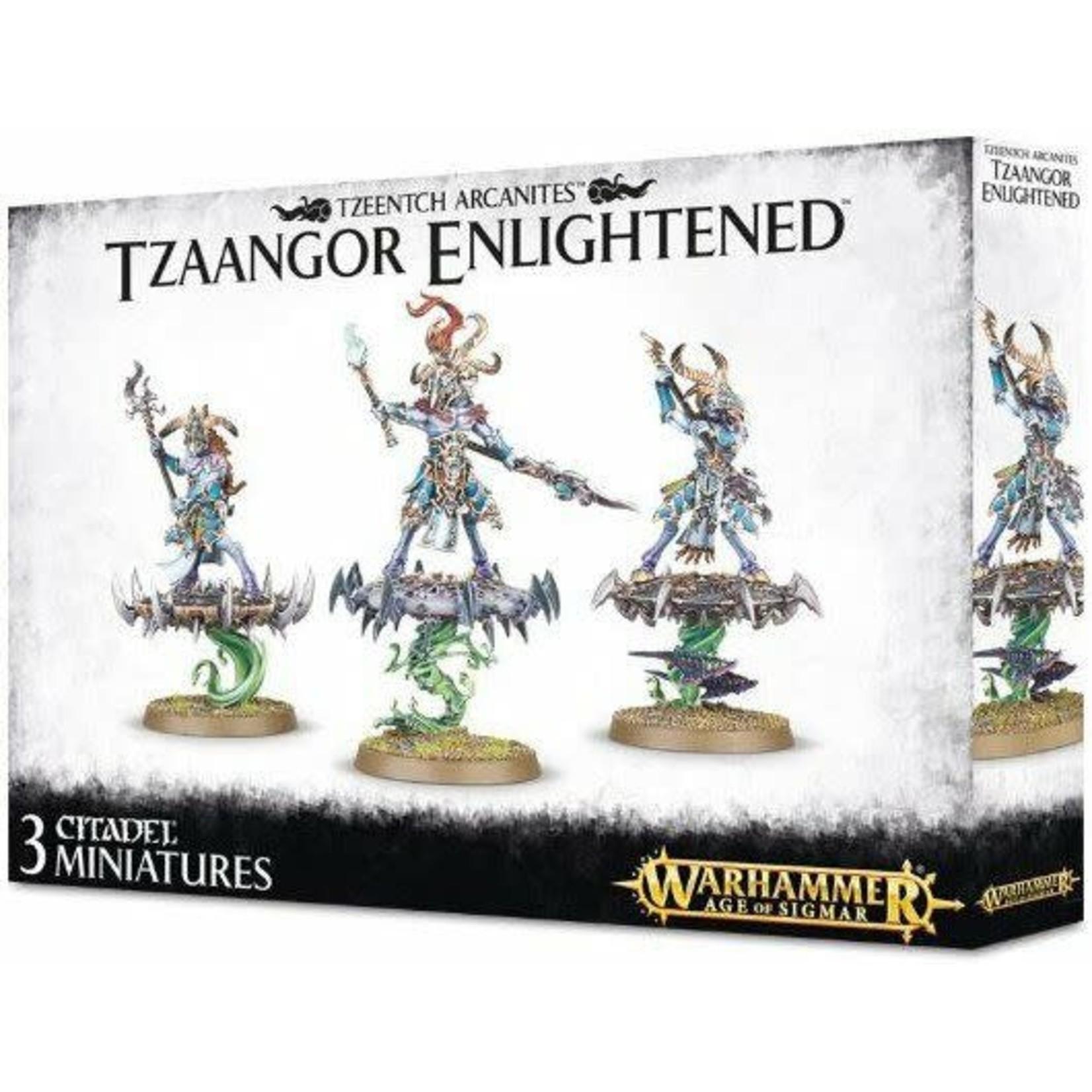Tzaangors Enlightened (AOS)
