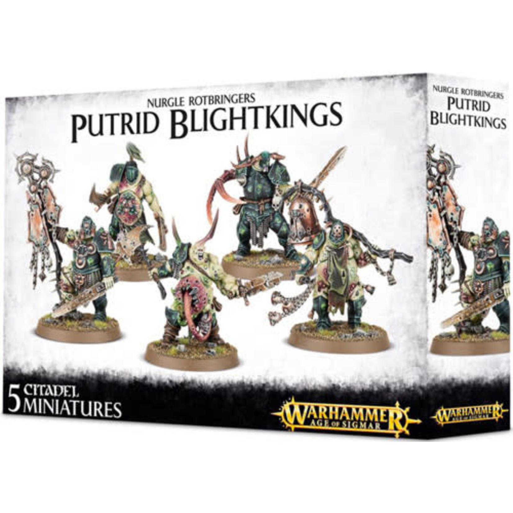 Nurgle Rotbringers Putrid Blightkings (AOS)