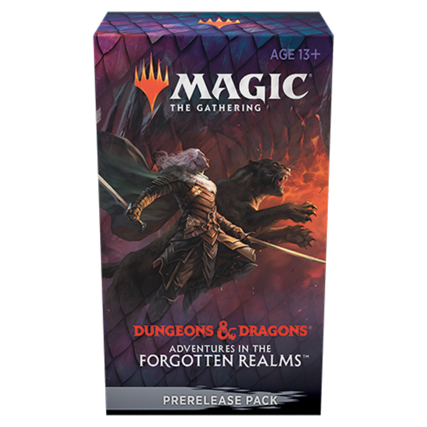 Wizards of the Coast D&D Adventures in the Forgotten Realms Prerelease Kit