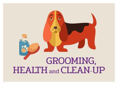 Grooming, Health, & Clean Up