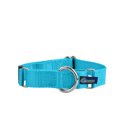 "2 Hounds Design Double loop Martingale: Turquoise, 5/8"" M"