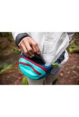 Ruffwear Home Trail Hip Pack: Aurora Teal, OS