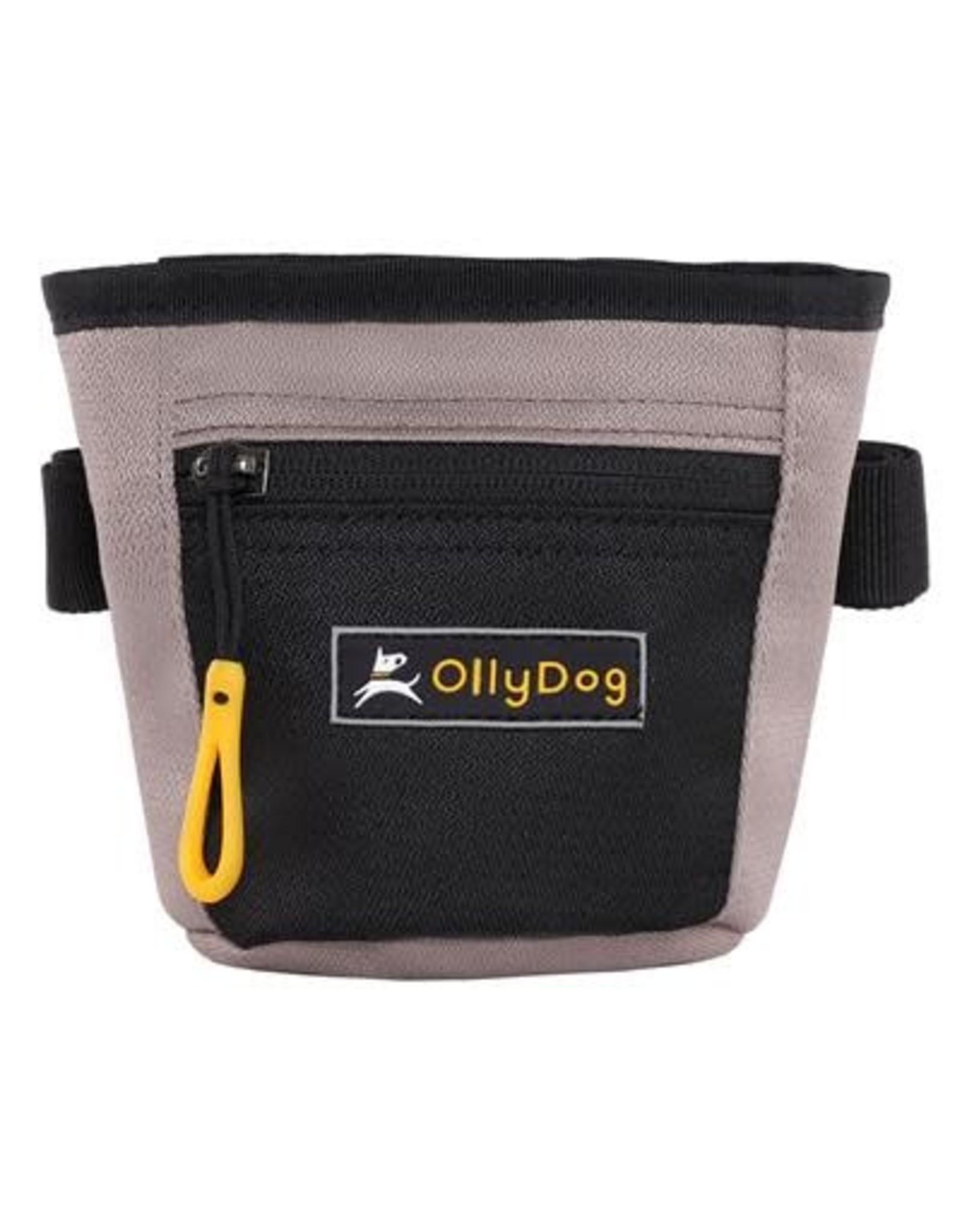 OllyDog Goodie Treat Bag: Champagne, os