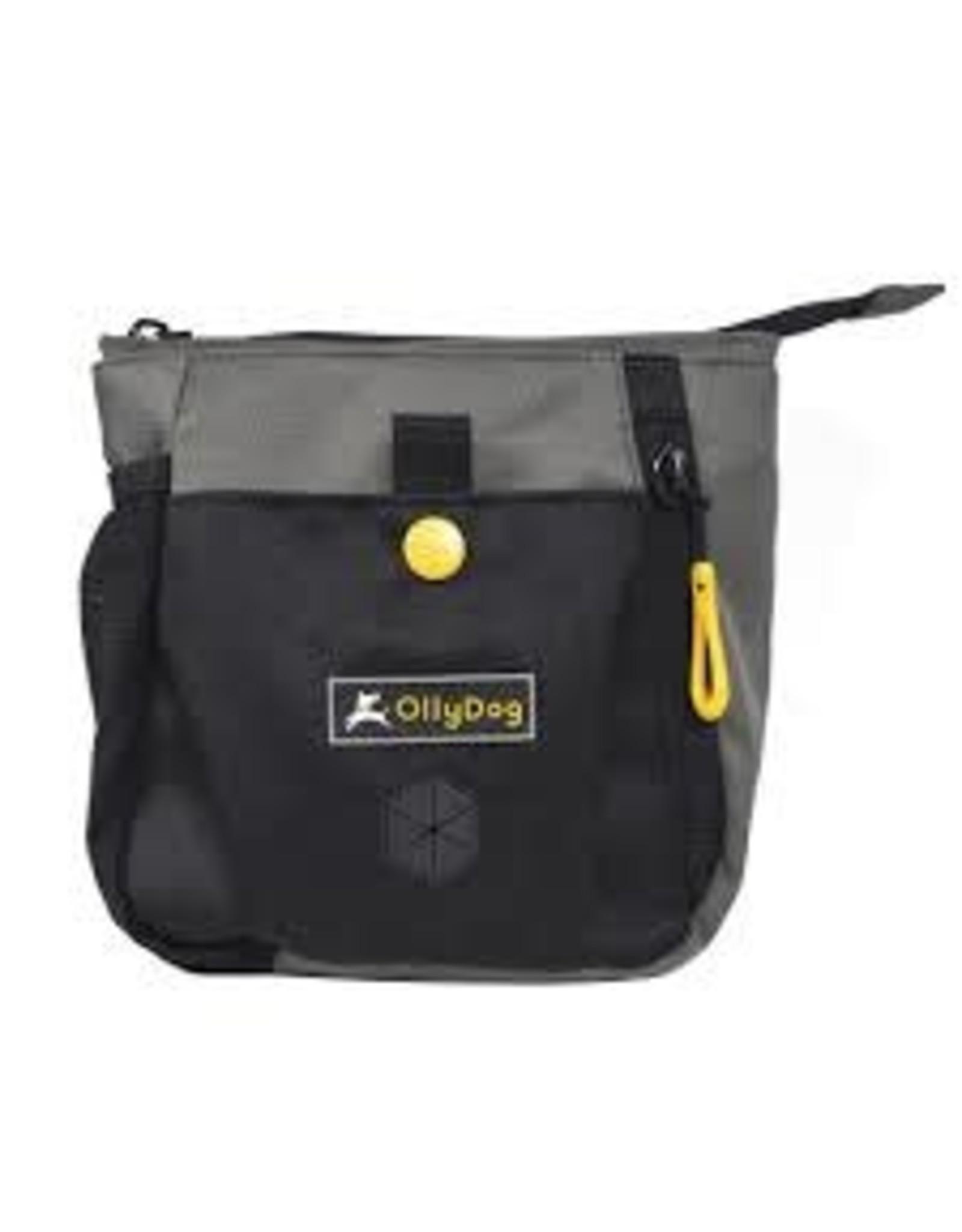 OllyDog OllyDog BackCountry Day Bag: Flint, os