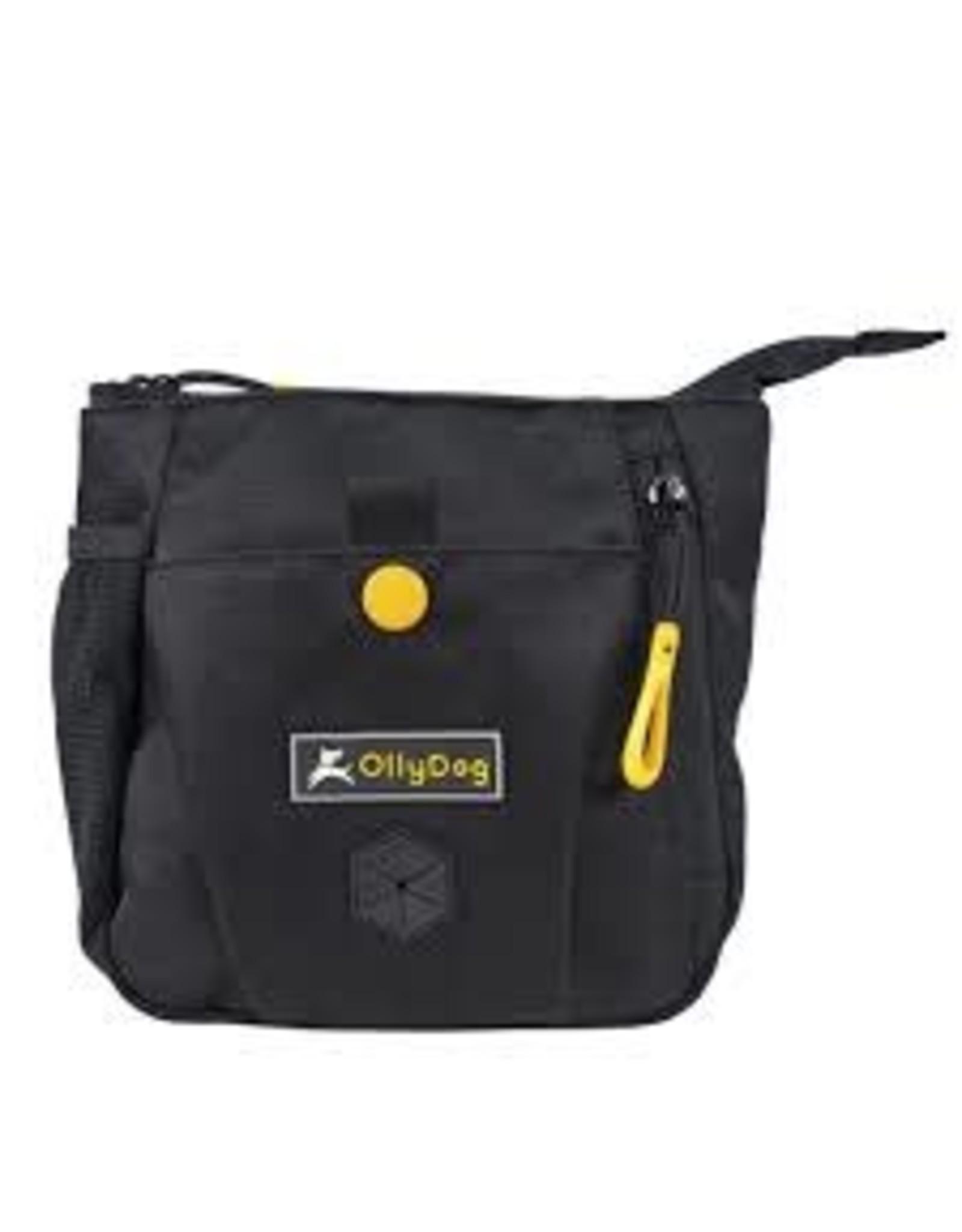 OllyDog OllyDog BackCountry Day Bag: Raven, os
