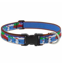 Lupine Lupine Special Delivery Collar: 1 in wide, 12-20 inch
