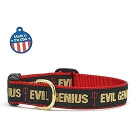 Up Country Evil Genius Collar: Narrow, XS