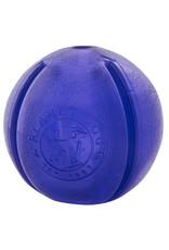 Planet Dog Planet Dog Orbee-Tuff GuRu: Purple, 4 in