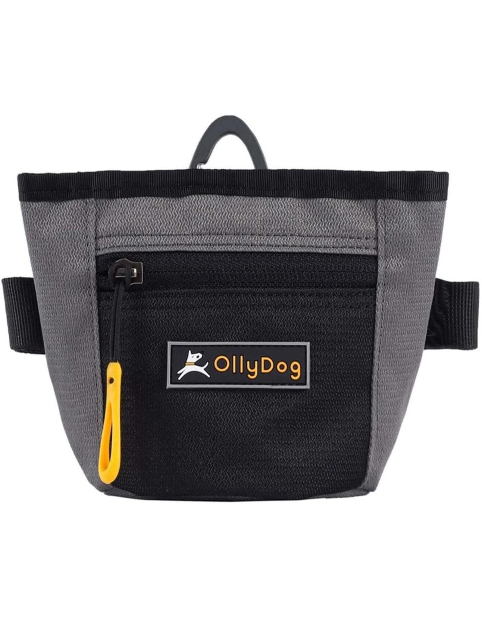 OllyDog Goodie Treat Bag: Flint, os