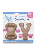 Benebone Benebone Bacon Chew: Puppy, 2 pack Dental Chew & Wishbone