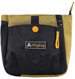 OllyDog OllyDog BackCountry Day Bag: Amber Green, os