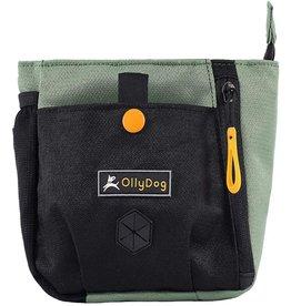 OllyDog OllyDog BackCountry Day Bag: Jaden, os