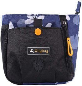 OllyDog OllyDog BackCountry Day Bag: Aloha Blue, os