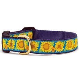 Up Country Bright Sunflower Collar: Wide, L