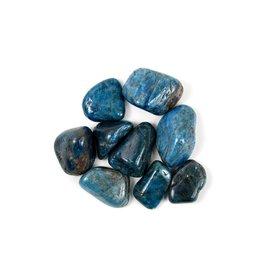 "Apatite Tumbled 1-3/4"" Pocket Stone"