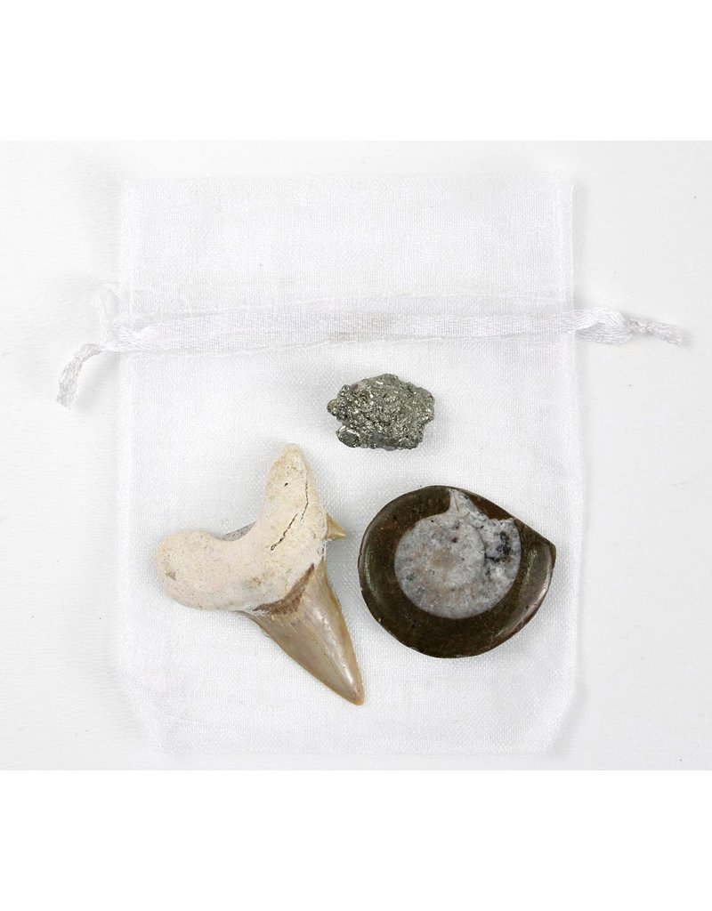 Earth's Buried Treasure Bundle