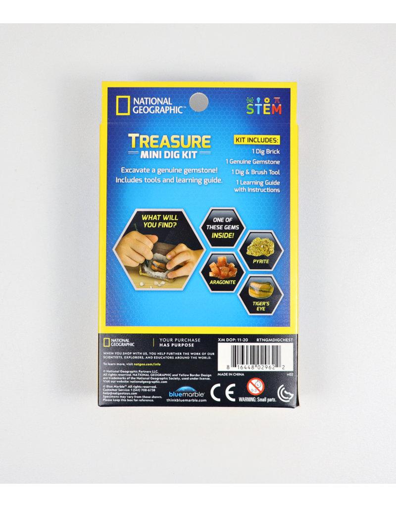 Treasure Mini Dig Kit