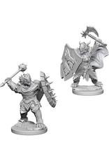 Dungeons & Dragons Dungeons & Dragons: Nolzur's - Dragonborn Male Paladin