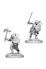 Dungeons & Dragons Dungeons & Dragons: Nolzur's - Earth Genasi Male Fighter
