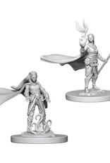 Dungeons & Dragons Dungeons & Dragons: Nolzur's - Elf Female Druid