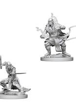Dungeons & Dragons Dungeons & Dragons: Nolzur's - Githzerai