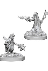Dungeons & Dragons Dungeons & Dragons: Nolzur's - Gnome Female Wizard