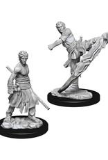 Dungeons & Dragons Dungeons & Dragons: Nolzur's - Half-Elf Male Monk