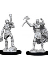 Dungeons & Dragons Dungeons & Dragons: Nolzur's - Human Female Barbarian