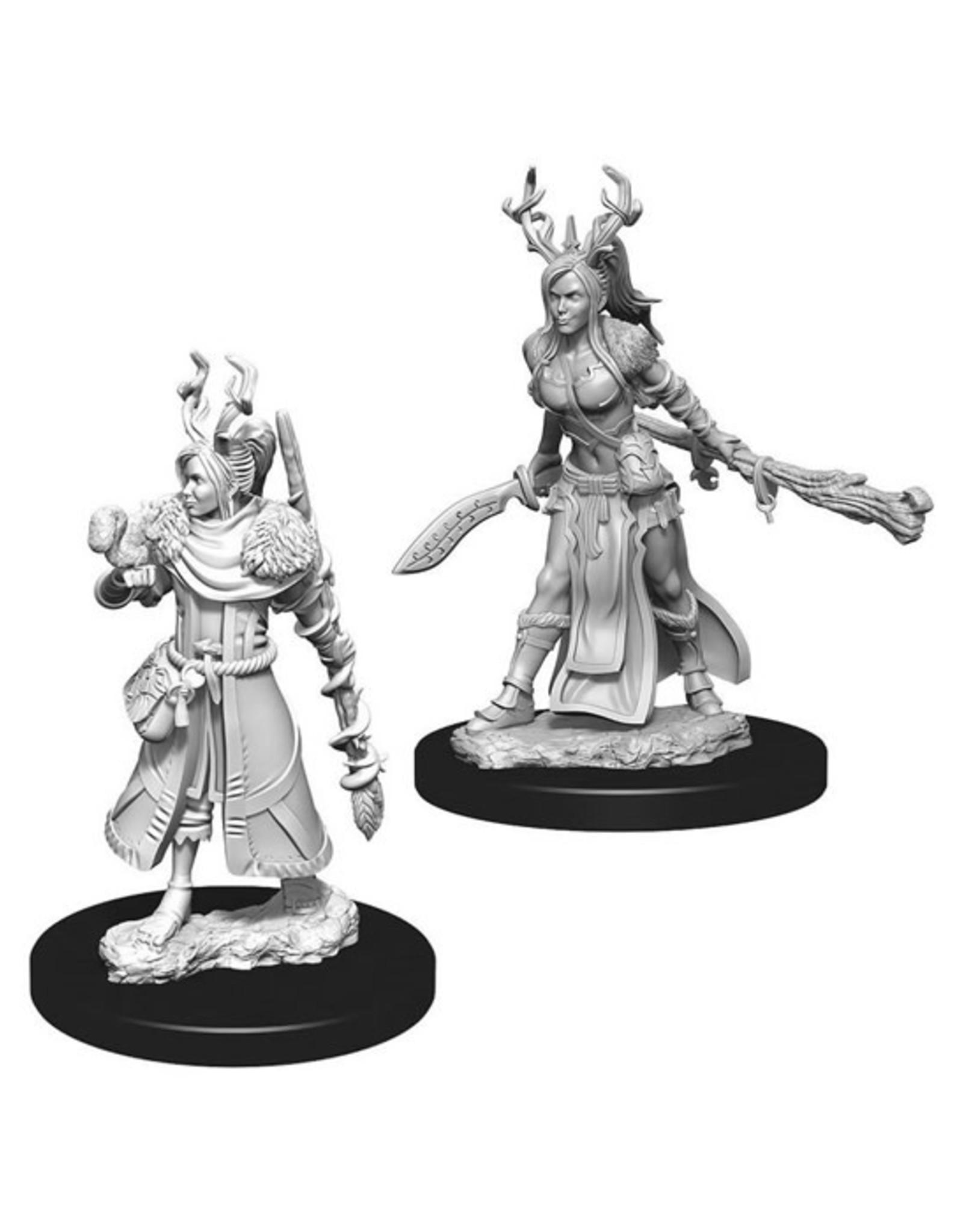 Dungeons & Dragons Dungeons & Dragons: Nolzur's - Human Female Druid