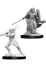 Dungeons & Dragons Dungeons & Dragons: Nolzur's - Human Female Paladin