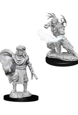 Dungeons & Dragons Dungeons & Dragons: Nolzur's - Human Male Druid