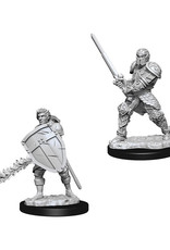 Dungeons & Dragons Dungeons & Dragons: Nolzur's - Human Male Fighter