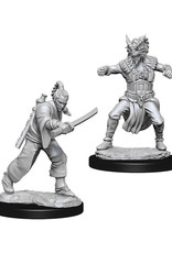 Dungeons & Dragons Dungeons & Dragons: Nolzur's - Human Male Monk