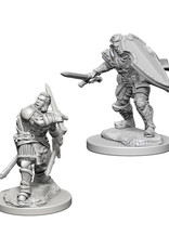 Dungeons & Dragons Dungeons & Dragons: Nolzur's - Human Male Paladin
