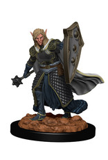 Dungeons & Dragons Dungeons & Dragons: Nolzur's - Premium - Elf Male Cleric