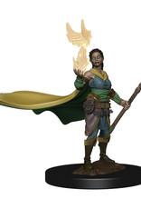 Dungeons & Dragons Dungeons & Dragons: Nolzur's - Premium - Elf Female Druid