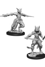 Dungeons & Dragons Dungeons & Dragons: Nolzur's - Tabaxi Female Rogue