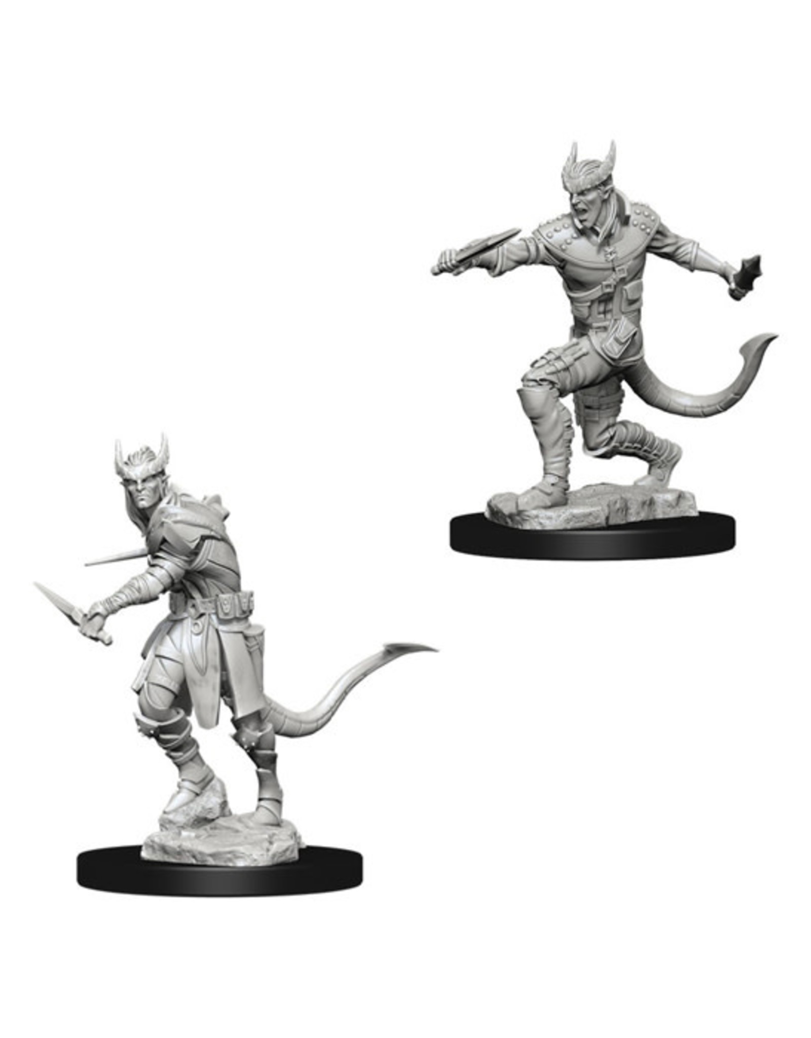 Dungeons & Dragons Dungeons & Dragons: Nolzur's - Tiefling Male Rogue