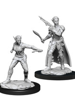 Dungeons & Dragons Dungeons & Dragons: Nolzur's - Shifter Female Rogue