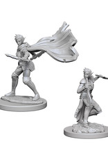 Pathfinder Pathfinder Battles: Deep Cuts - Elf Female Rogue