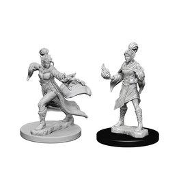 Pathfinder Pathfinder Battles: Deep Cuts - Elf Female Sorcerer