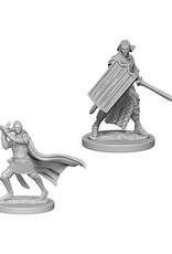 Pathfinder Pathfinder Battles: Deep Cuts - Elf Male Paladin