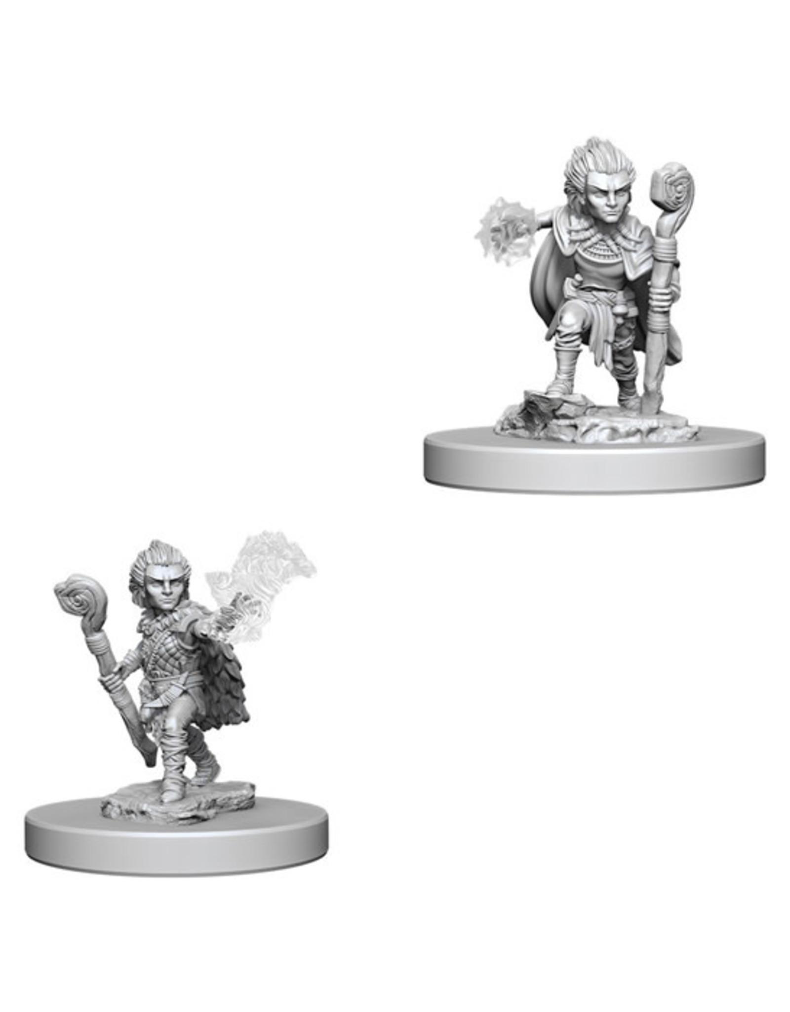 Pathfinder Pathfinder Battles: Deep Cuts - Gnome Male Druid