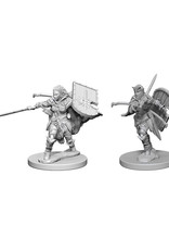 Pathfinder Pathfinder Battles: Deep Cuts - Human Female Paladin
