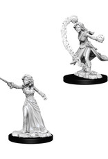 Pathfinder Pathfinder Battles: Deep Cuts - Human Female Wizard