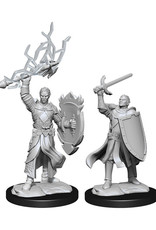 Dungeons & Dragons Dungeons & Dragons: Nolzur's - Half-Elf Male Paladin