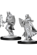 Dungeons & Dragons Dungeons & Dragons: Nolzur's - Kalashtar Female Cleric