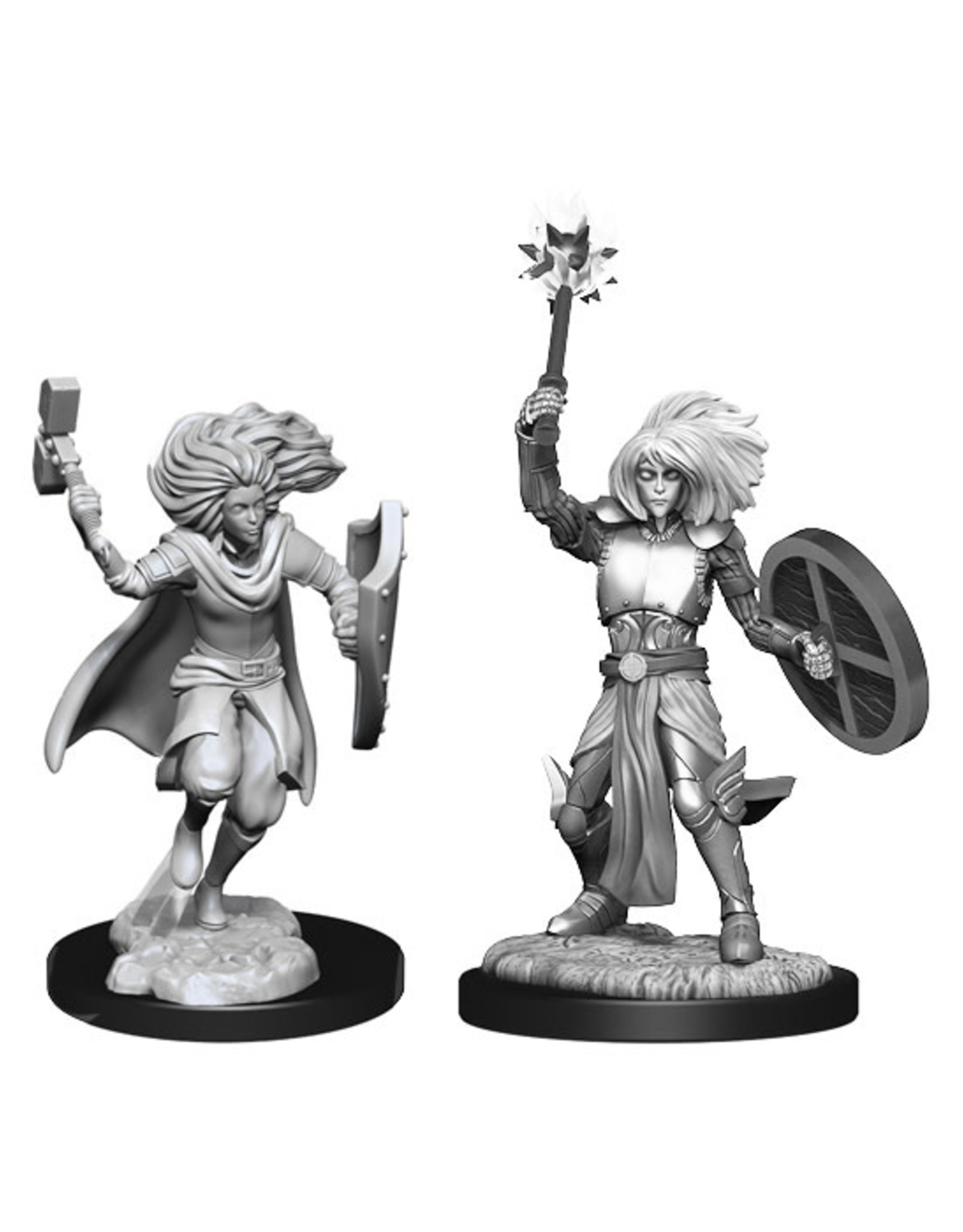 Dungeons & Dragons Dungeons & Dragons: Nolzur's - Changeling Male Cleric