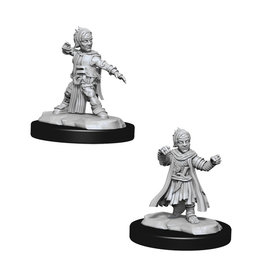 Pathfinder Pathfinder Battles: Deep Cuts - Halfling Male Monk